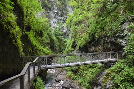 visiter les gorges de kakuetta au pays basque, c'est comme aller en amazonie, une promenade extraordinaire avec les filles en espadrilles